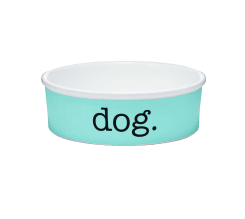 Tiffany Dog accessories