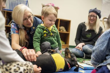 Samuel Thompson, 2, of Forest Park, pets Deke, a therapy dog from PAWSitive Therapy Troupe during a Read with a Dog Storytime in the Austin Room at the Forest Park Public Library. | Alexa Rogals/Staff Photographer