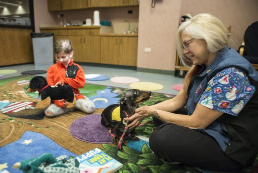 Children play with stuffed animals and read books along with Deke, a therapy dog from PAWSitive Therapy Troupe. | Alexa Rogals/Staff Photographer