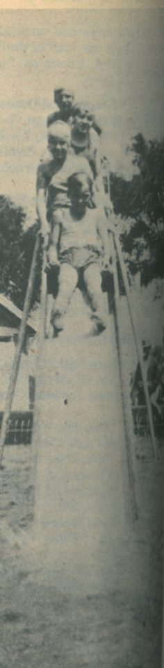 "The Kraclek kids are seen here on the swimming pool slide. This slide was by the Lions Club when Commissioner Kurt Berliner took the initiative to re-open the Forest Park Amusement Park Pool in 1927. The Des Plaines River was too polluted, and there were no other ""swimming holes"" to cool off in. Click link below to Natorium to see more."