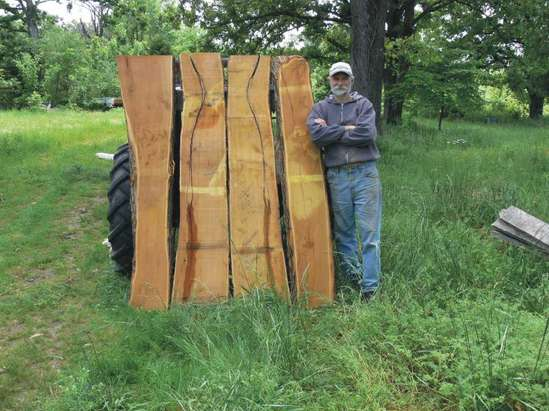 Osage Orange Logs For Sale