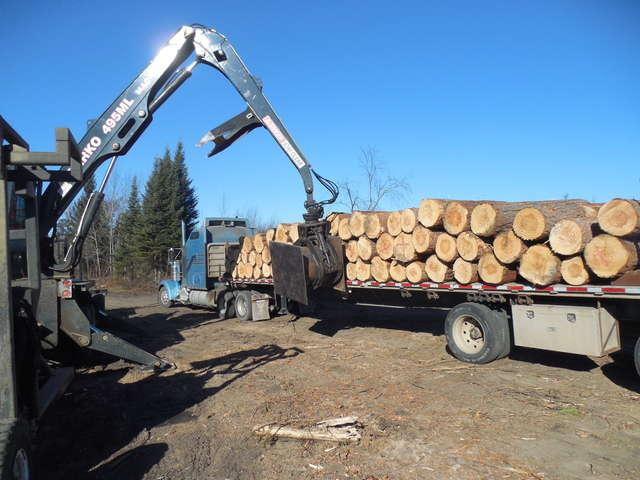 Osage Orange Wood For Sale Craigslist