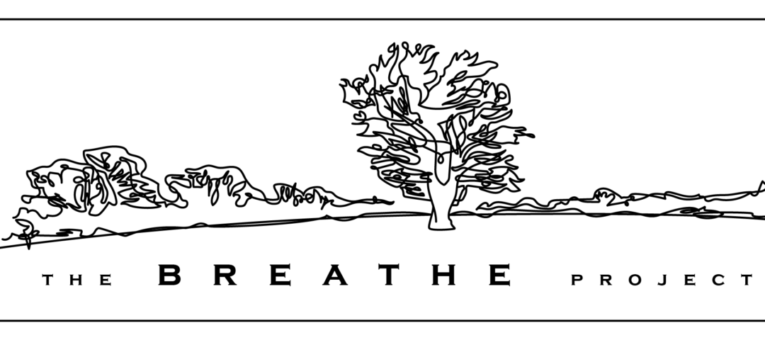 Deadline: 10.05.19 – Forest School Leader / Assistant – The Breathe Project – Wiltshire