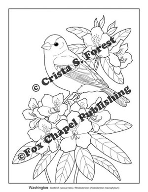 Washington Goldfinch Coloring Page Coloring Pages