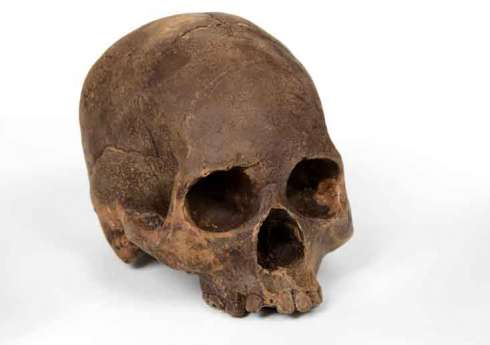 Chocolate Skulls 1