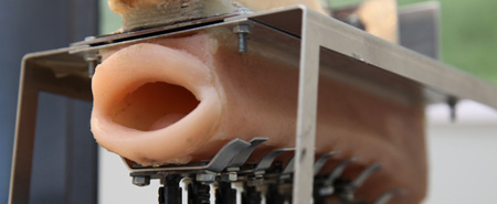 Robot Mouth
