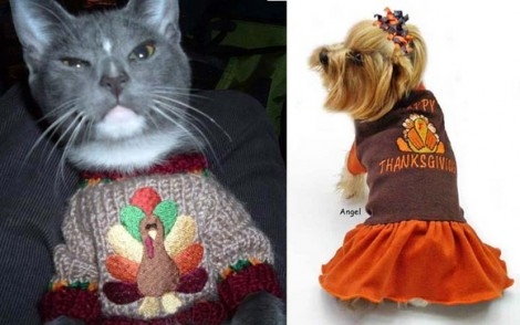 tthanksgiving sweater ugly pet