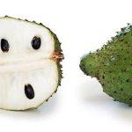 Tomar Graviola estimula el sistema inmune y protege el hígado