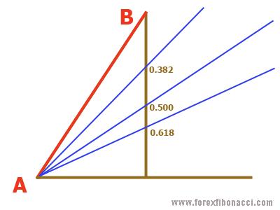 Fibonacci fan sketch