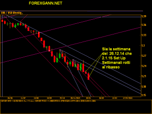 Andamento Euro Dollaro settimanale 2 gennaio 2014