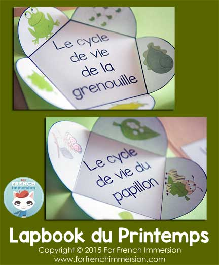 French Spring Lapbook - Foldable Petals for Life Cycles of Butterflies and Frogs