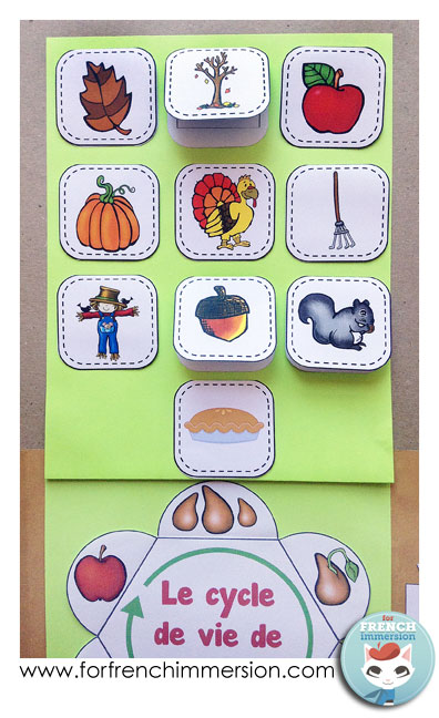 """The FREE vocabulary flaps (top) can be used along with the """"lap book d'automne"""". Click to learn more!"""
