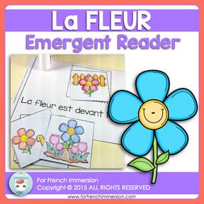 French Emergent Reader: la FLEUR (the flower). Livre pour les lecteurs débutants. En français.