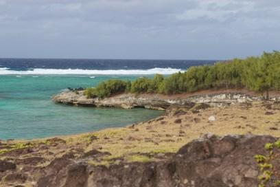 Rocky, rugged Coast