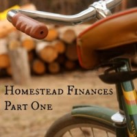 Homestead Finances Part One