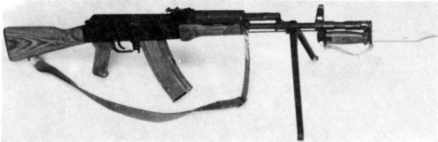 Tantal wz.88 with wood stock