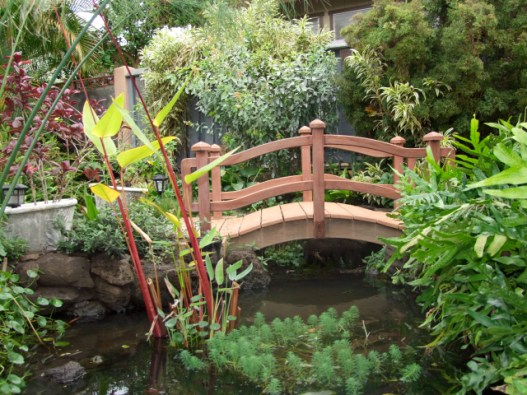 A bridge in the children's garden