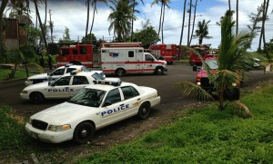 Firefighters from four fire stations helped to put the fire at Coco Palms on Fourth of July.