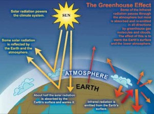 Idealized model of the natural greenhouse effect.