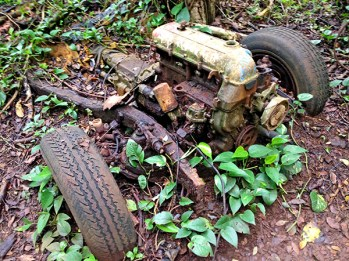 The Hopi'i Falls trail in Kapahi is relatively easy and actually leads to two waterfalls, enjoyed regularly by several visitors and locals. Just how this rusty car got in the trail is a mystery, and whoever abandoned it there deserves a senselessness award.