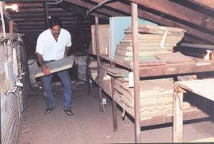 Randy Wichman in the attic of the former Kekaha Sugar Co. headquarters in 2000. Photo by the Kaua'i Historical Society