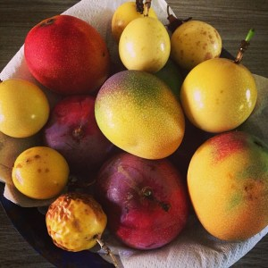 Mango trees and likikoi vines are bursting with fruit right now. Sharing fruits with neighbors, friends, families and even strangers is a common practice on the Garden Isle.