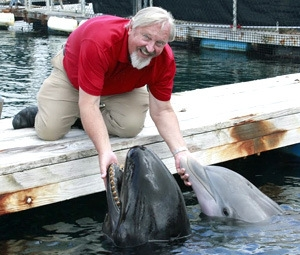 Marine Mammal Research Program Director Paul Nachtigall and Kina and BJ.