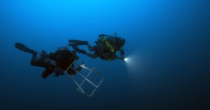 Hauk and Pyle during a dive. Photo NOAA