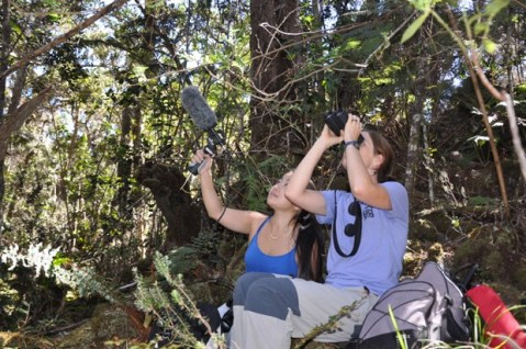 Esther Sebastián-González (with binoculars) and Ann Tanimoto record bird songs in the forest above Hilo. Photo courtesy of LOHE