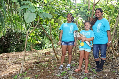 Kawaikini students at the school's wauke forest.