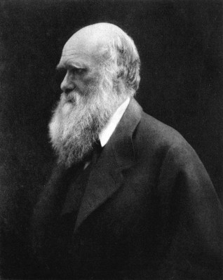 Photograph of Charles Darwin in 1867 by Julia Margaret Cameron.