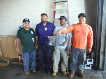 The crew that captured the live mongoose at Lihu'e Aiport. Photo courtesy of KISC