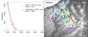 Population estimates and distributions for the akeke'e. On the left panel, linear and exponential population change models fitted to the 2000 to 2012 data are projected from 2013 to 2050 or estimated year of extinction. Areas of distributional range are shown on right panel from 1968 to 2012. Red is 2012, green is 2005-2008, and purple is 1968-1973. Graphic image courtesy of Paxton et al 2016