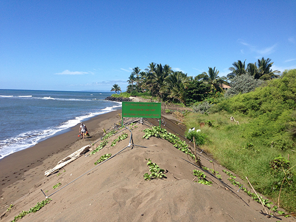 The Shifting Sands of Waimea Beach: New Data Evaluates Kikiaola Sand Bypass