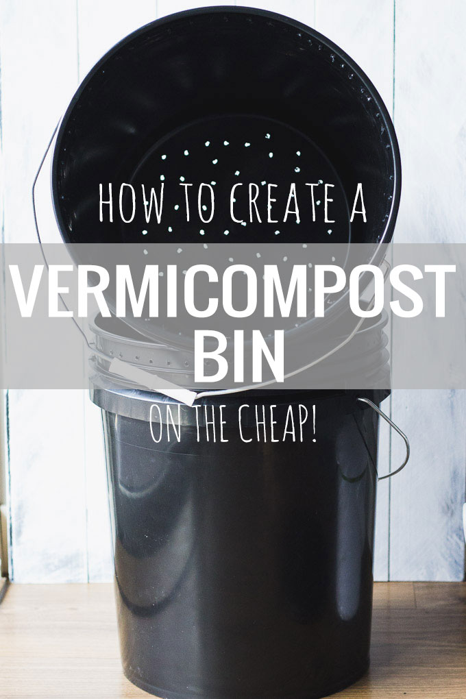 How to Create a Vermicompost Bin - on a budget! | Fork in the Kitchen