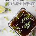 homemade ponzu sauce overhead by fork in the kitchen