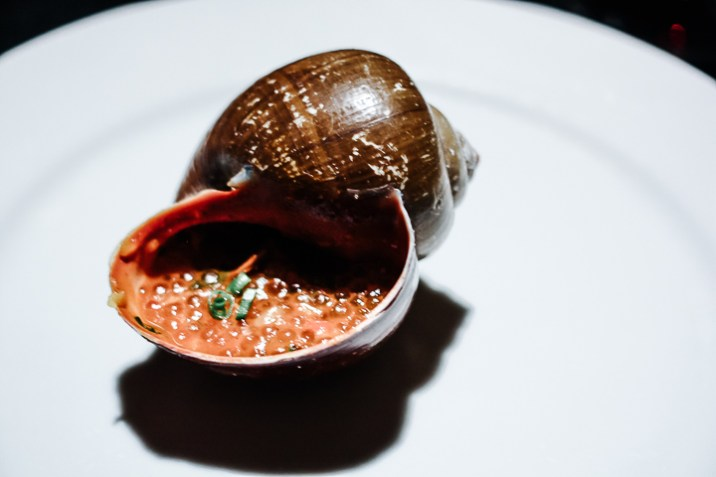 A snail from the Amazon rainforest on a white plate, a lavish meal that was worth breaking the bank while budget traveling.
