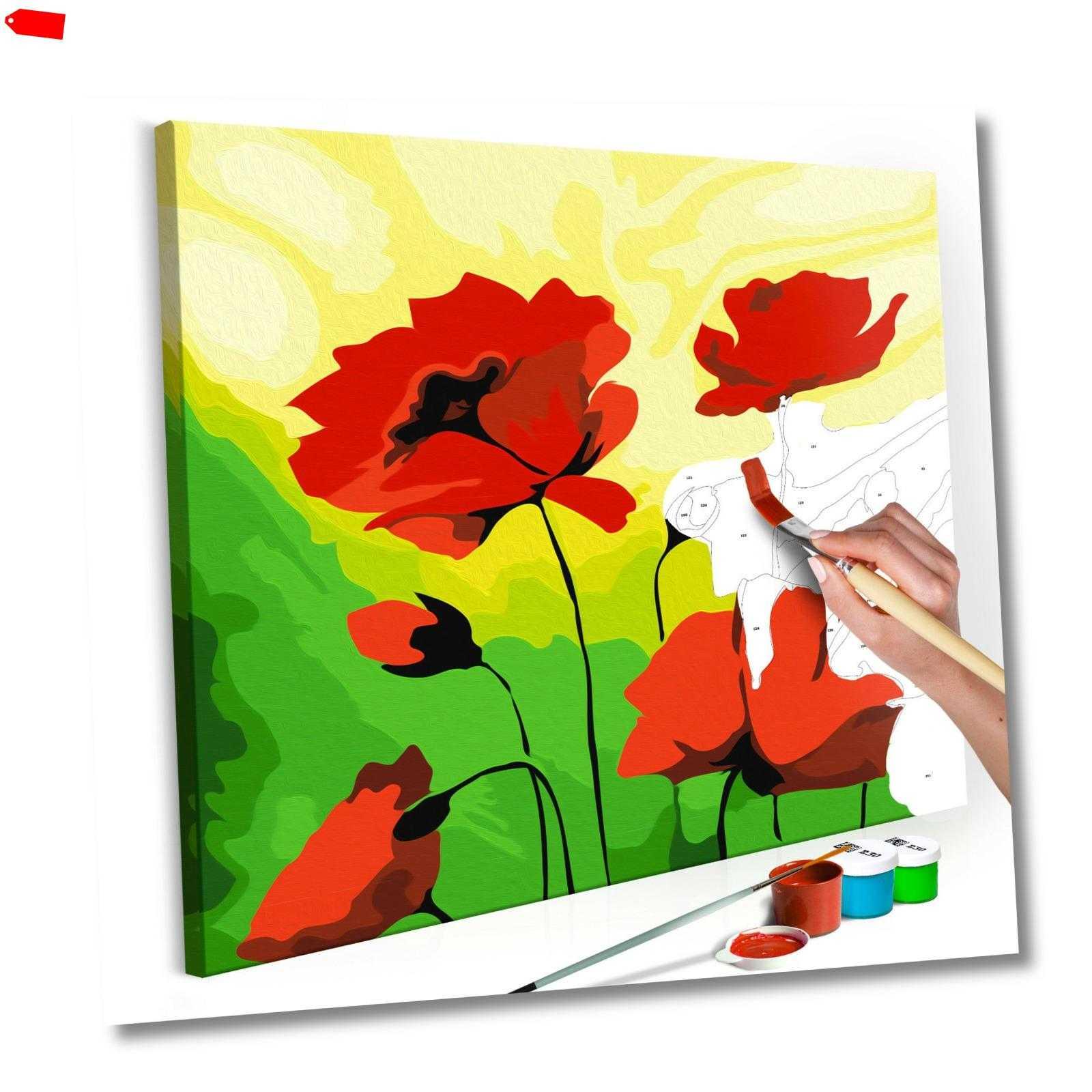 Malen nach Zahlen Blumen Mohn Erwachsene Malset Pinsel