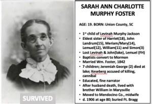 Sarah Ann Charlotte Murphy Foster