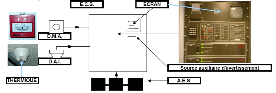 ECS-ECRAN