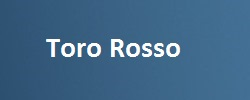 teams_tororosso_250x100