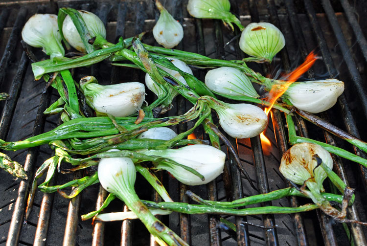 Grilled Onion