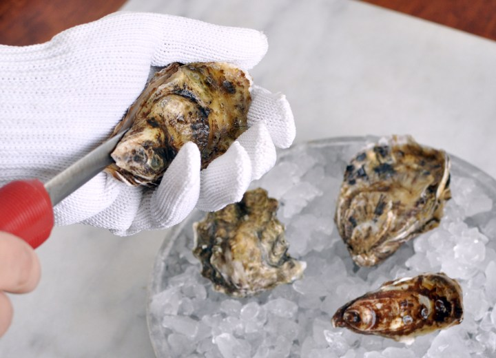 How to shuck an oyster. How to open raw oysters.