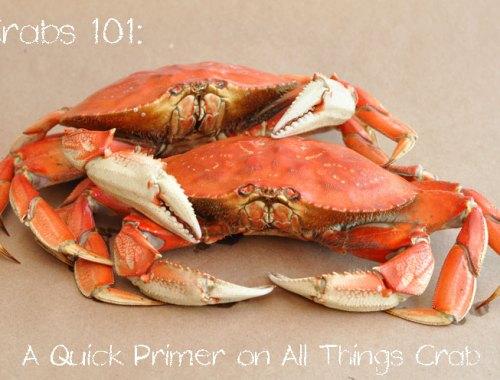 Dungeness Crab Primer