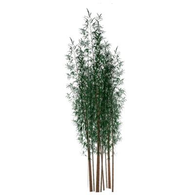 Tree Bamboo 3D Model FormFonts 3D Models Amp Textures
