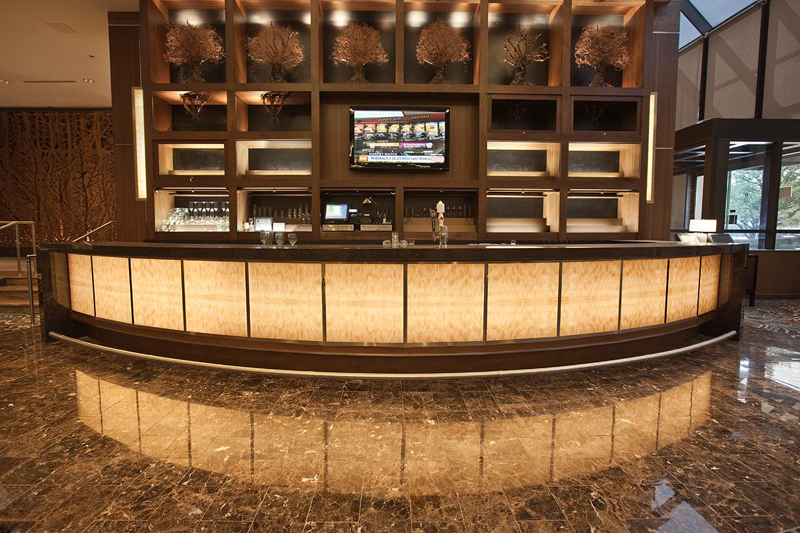 Better than Stone ViviStone is a Lighter Brighter Idea for the InterContinental Dallas  Forms