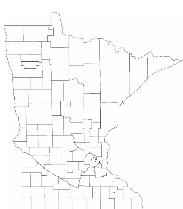 Blank Minnesota County Map Free Download
