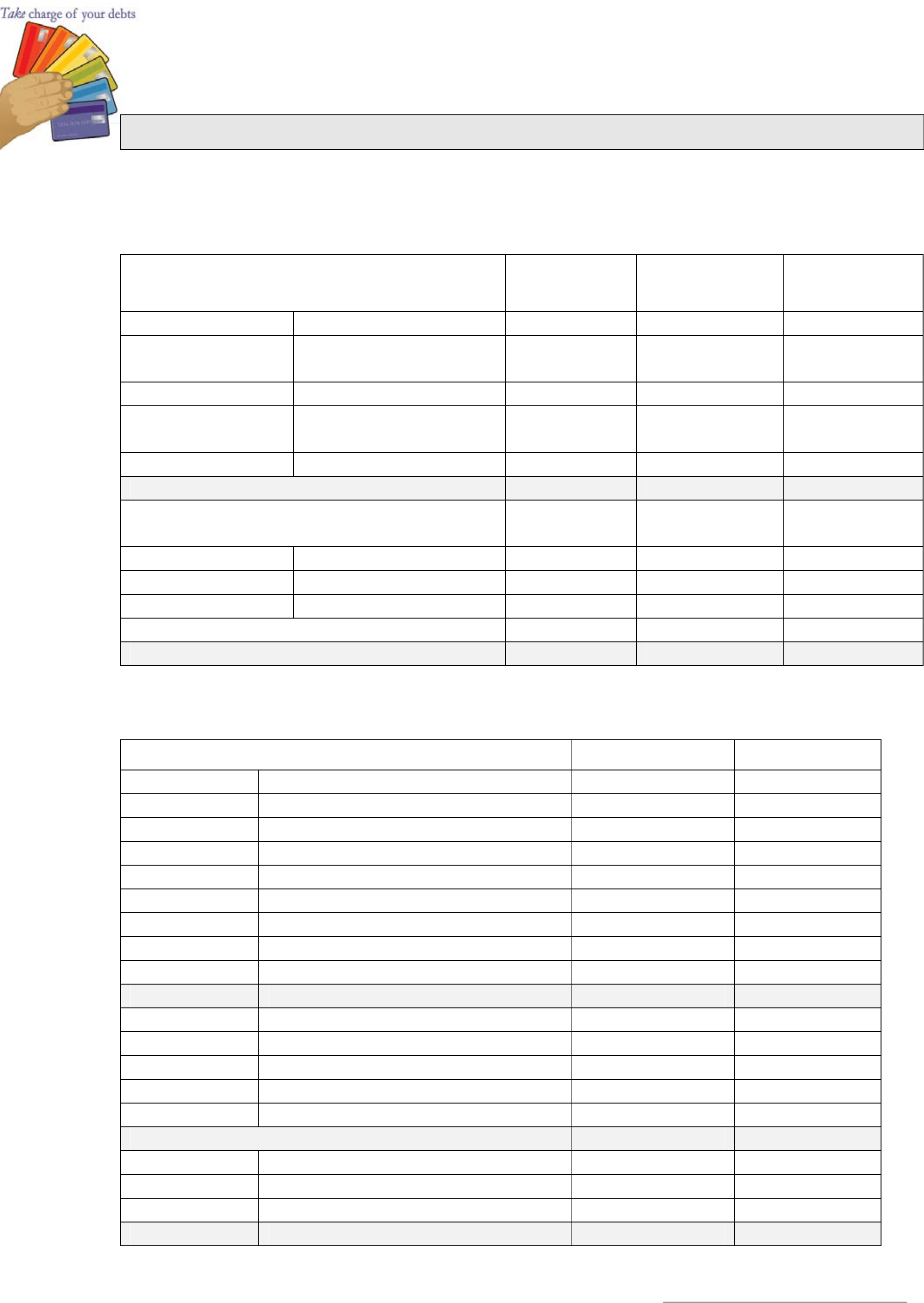 Sample Monthly Family Budget Template Free Download