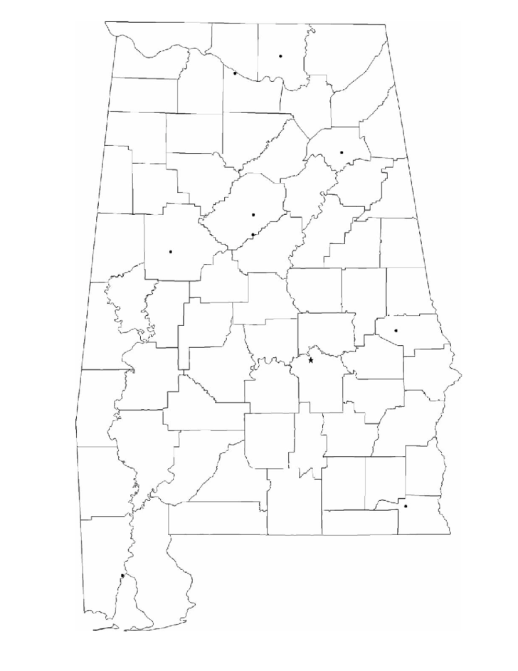 Blank Alabama City Map Free Download