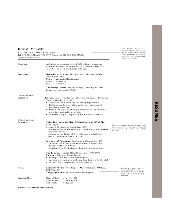 Chronological Resume Examples Free Download